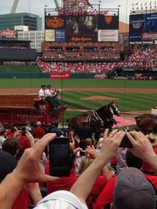 Opening Day 2013 at Busch Stadium